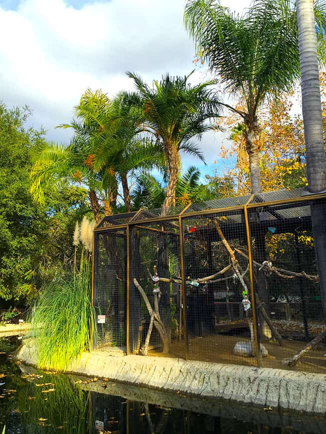 bird-cages-at-rancho-las-lomas