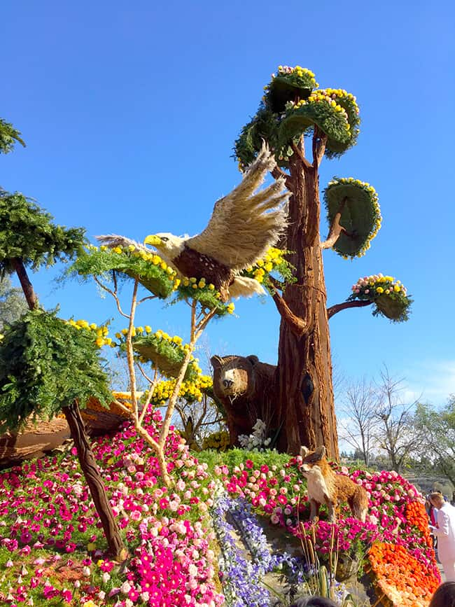 Tournament Of Roses Parade 2017 >> Tips on Visiting the Tournament of Roses Parade Floats - Popsicle Blog
