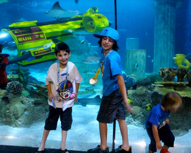 sea-life-aquarium-legoland