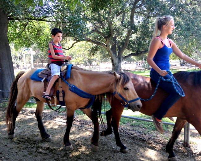 irvine-park-horses