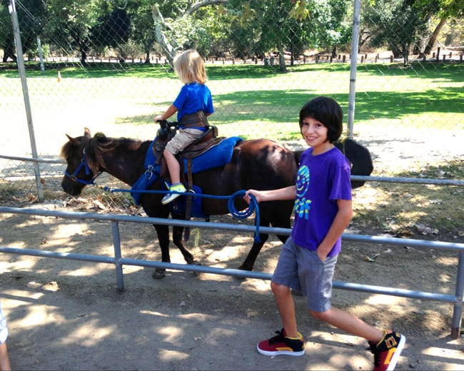 irvine-park-pony-rides