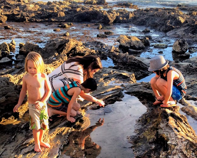 corona-del-mar-tide-pools
