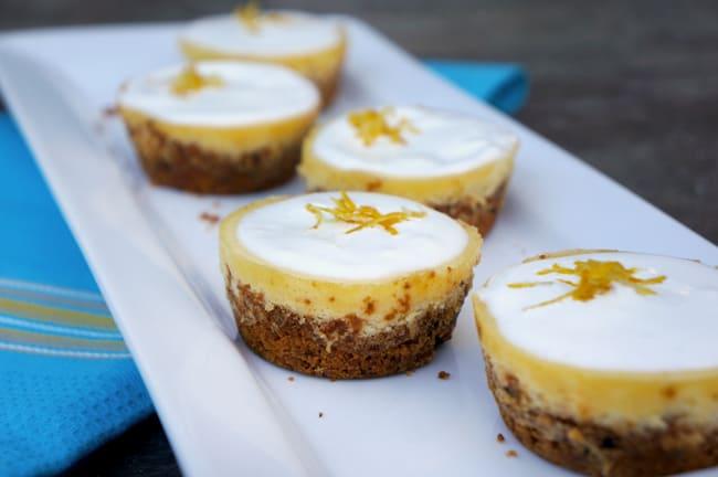 Cranberry Citrus Crisps Girl Scout Cookie Dessert