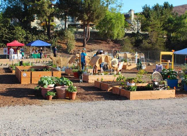 east-anaheim-community-garden-plots