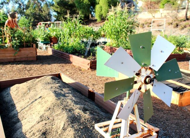 home-depot-garden