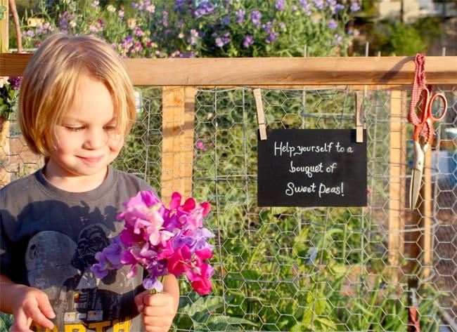 how-to-build-a-garden