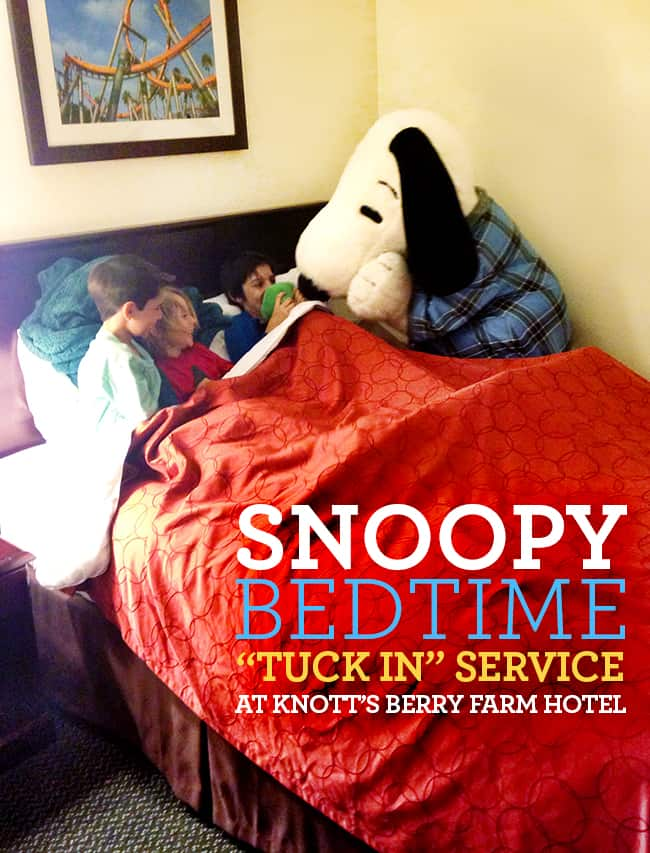 snoopy-bedtime-tuck-in-service-knotts-hotel