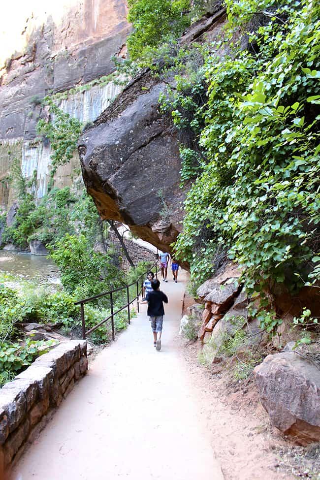 utah-zion-national-park-easy-trail