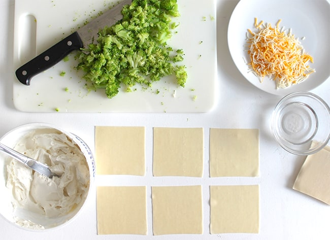how-to-make-wontons