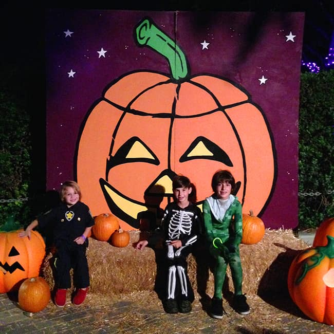 Legoland Brick-or-Treat Photo Props