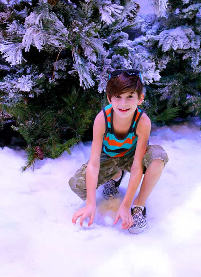 California Adventure Frozen Real Snow