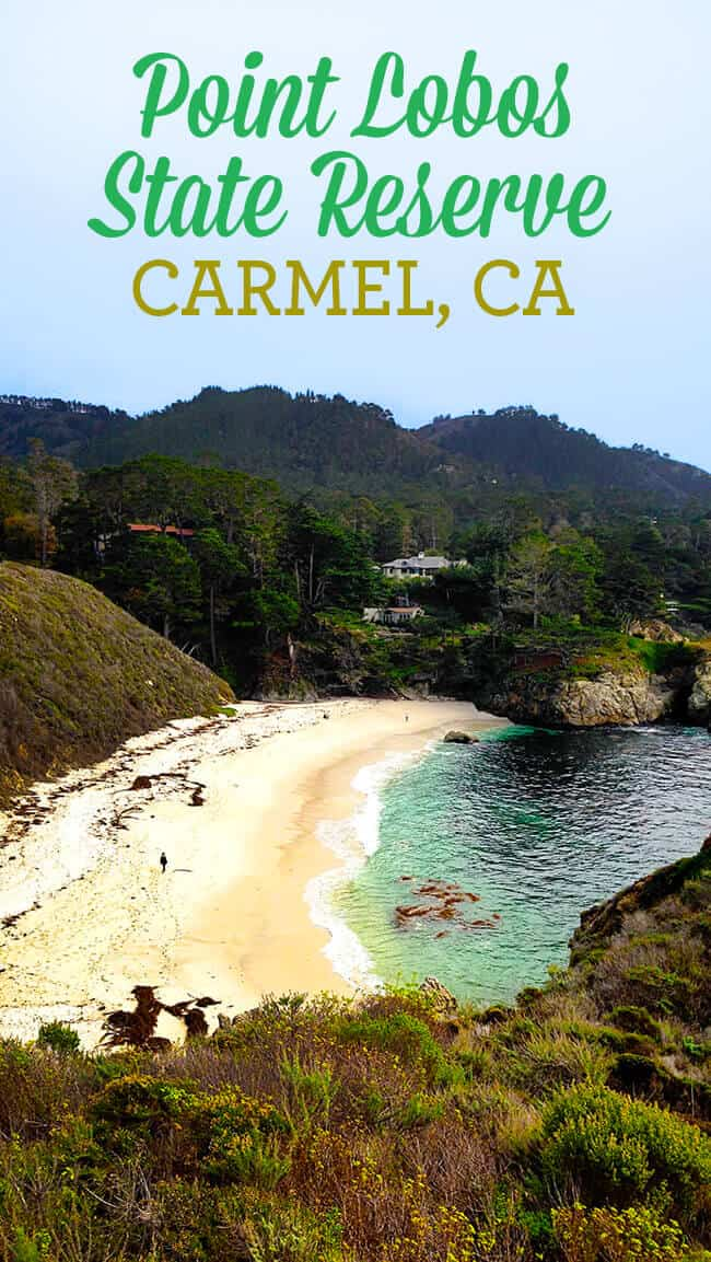 Point-Lobos-Reserve-Northern-California-Family-Travel