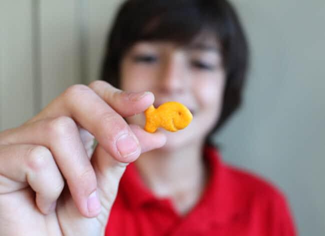 goldfish crackers tween snack
