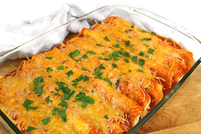 how-to-cook-sour-cream-chicken-enchiladas