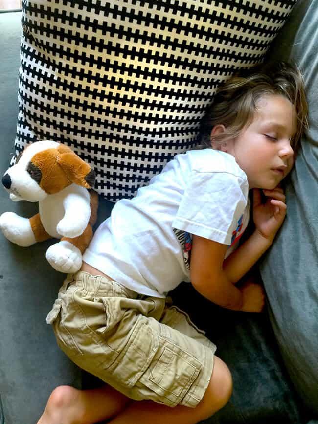 Sleeping Kindergardener