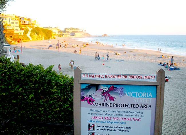 Victoria Street Beach