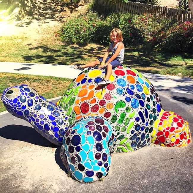 Turtle Playground in Laguna Beach
