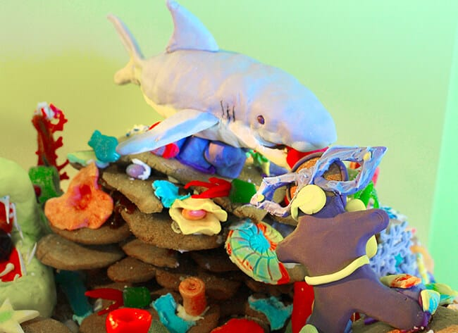 Discovery Cube Gingerbread House Shark