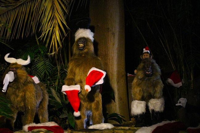 Disneyland Christmas Jingle Cruise MOnkeys