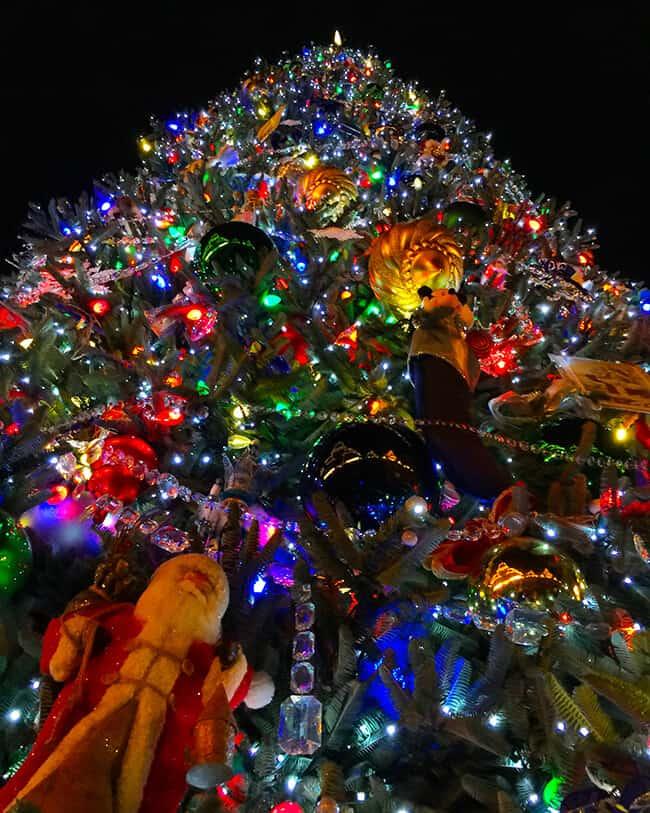 Disneyland Christmas Tree Ornaments Photo