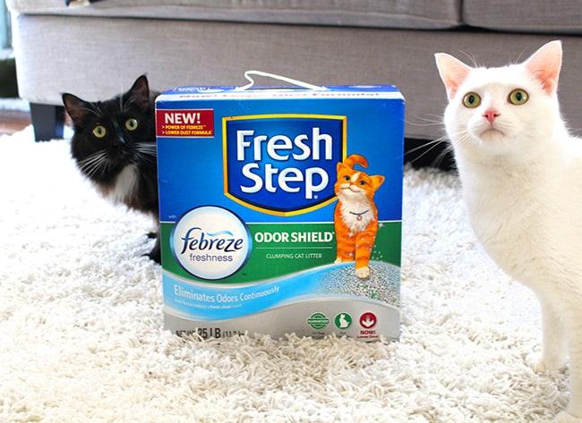 Fresh Step Odor Shield
