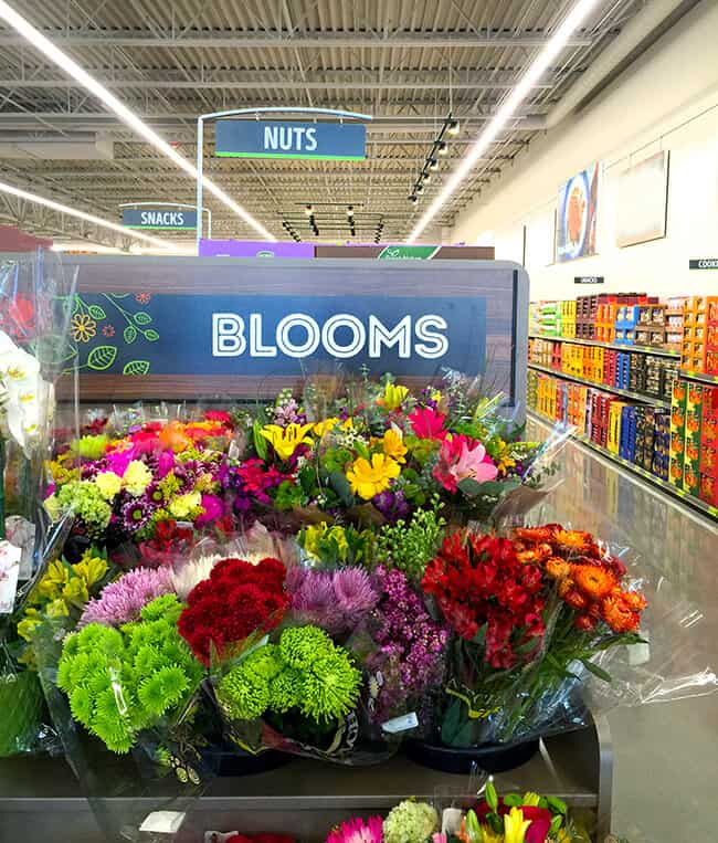 ALDI Blooms