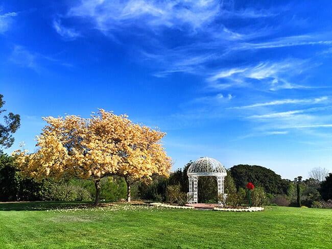 South Coast Botanic Garden Gazebo