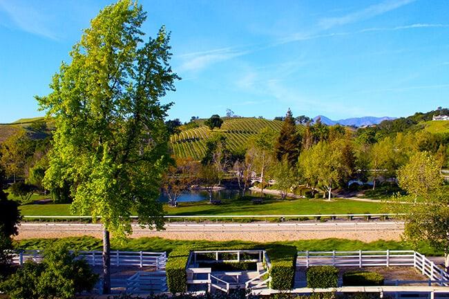 Bridlewood Estates Winery Race Track