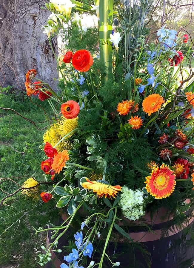 Taste of ALDI Flowers