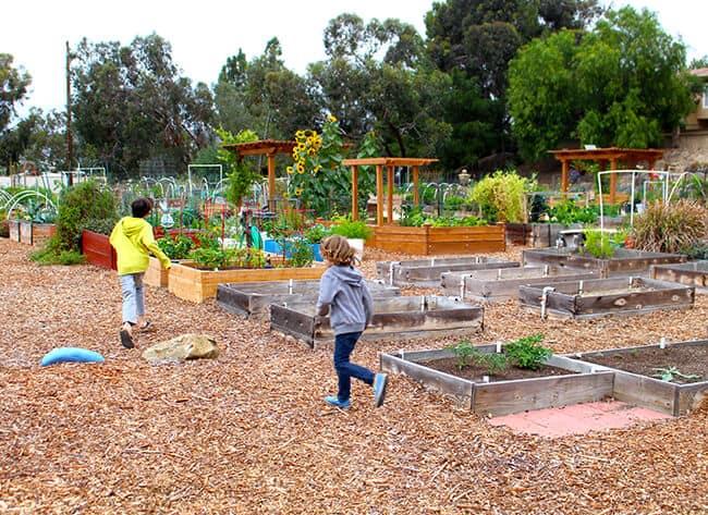 Children Running in a Garden