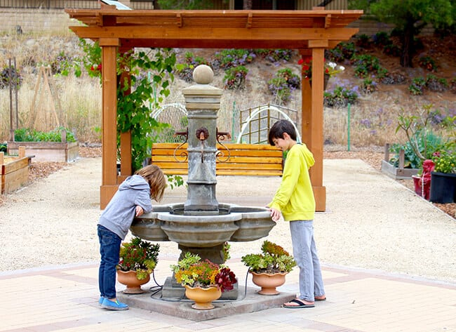 Kids Playing in a Garden Fountain