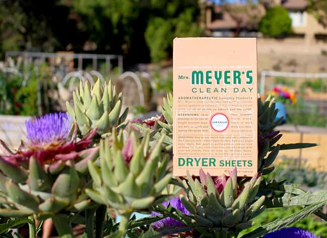 Meyer's Clean Day Dryer Sheets