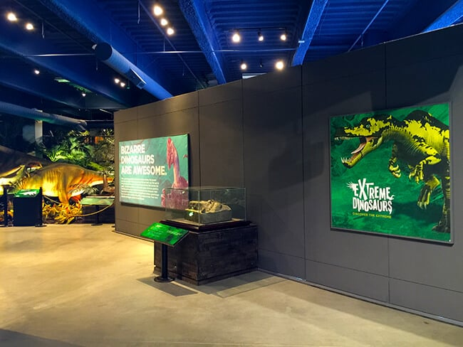 Extreme Dinosaurs at Discovery Cube