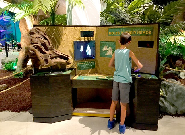 Interactive Dinosaur Exhibit in Orange County