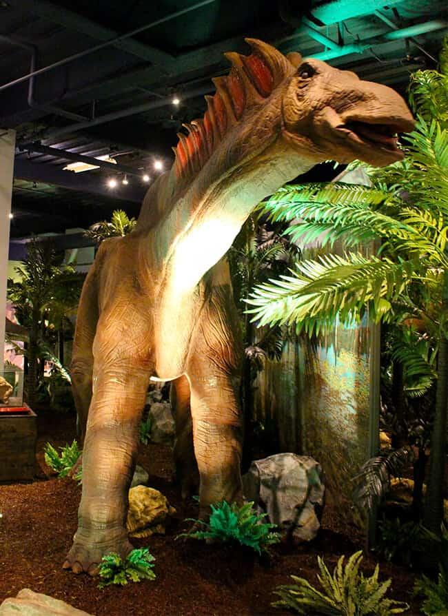Orange County Dinosaurs