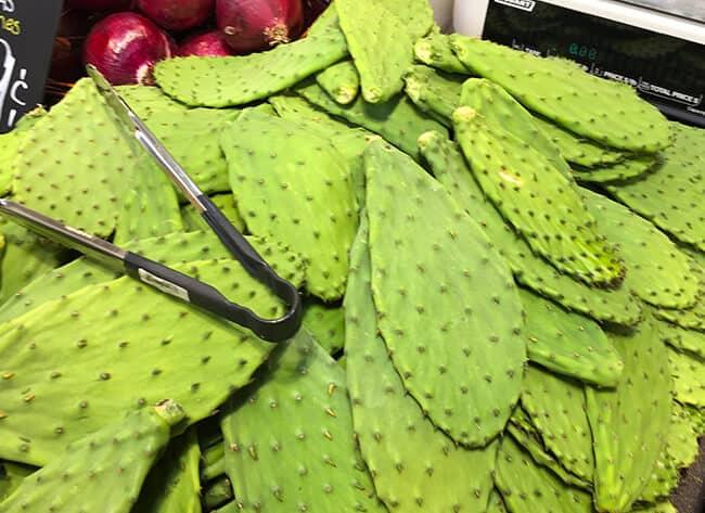 Northgate Cactus
