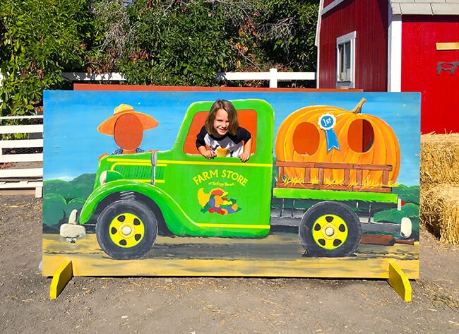 best-pumpkin-patches-to-take-photos-in-southern-california