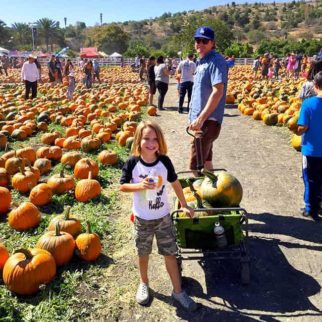 cal-poly-pomona-pumpkin-patch-wagon