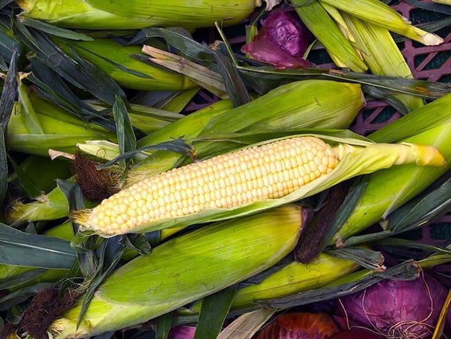 farmers-market-corn