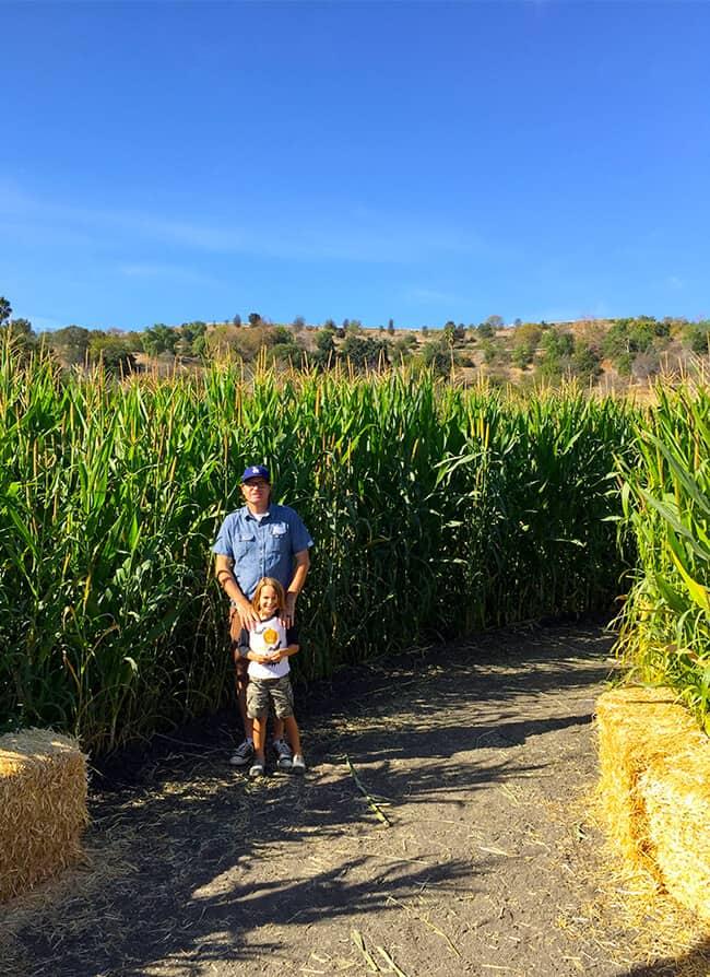 fun-corn-mazes-in-southern-california