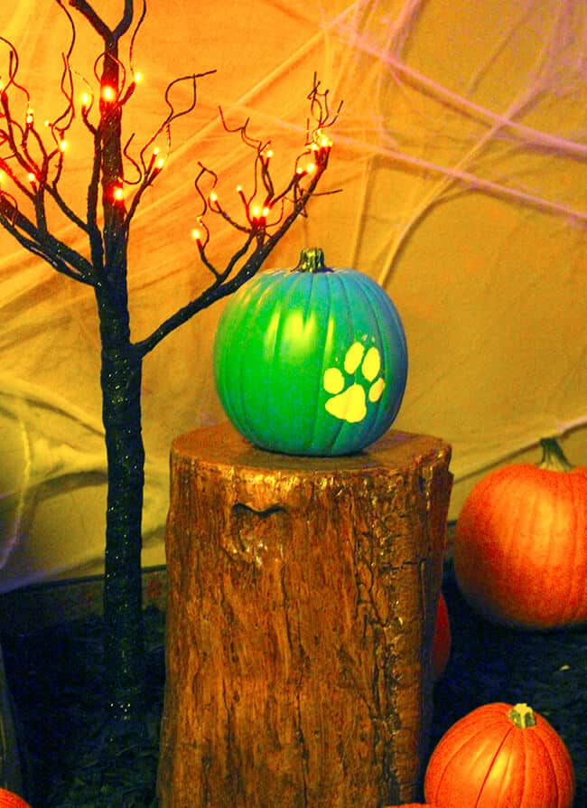 great_wolf_lodge_teal_pumpkin