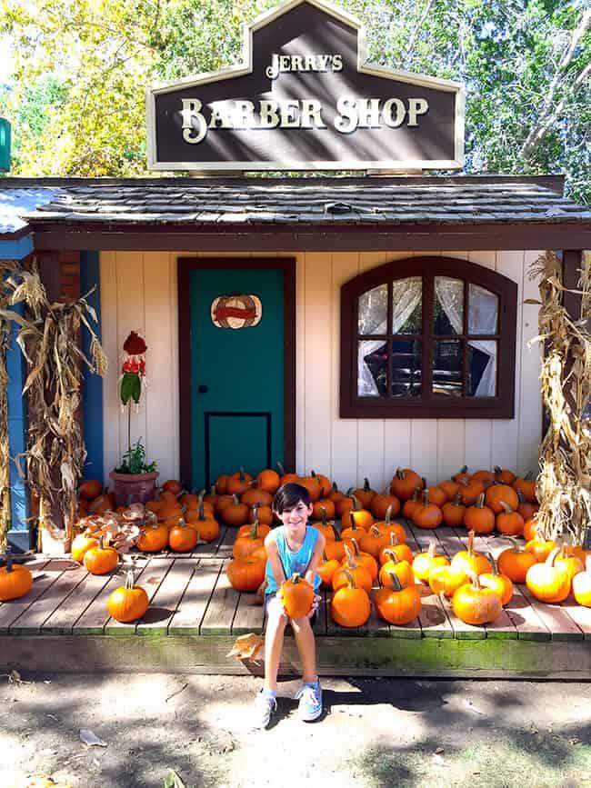 Irvine Park Railroad Pumpkin Patch Field Trips