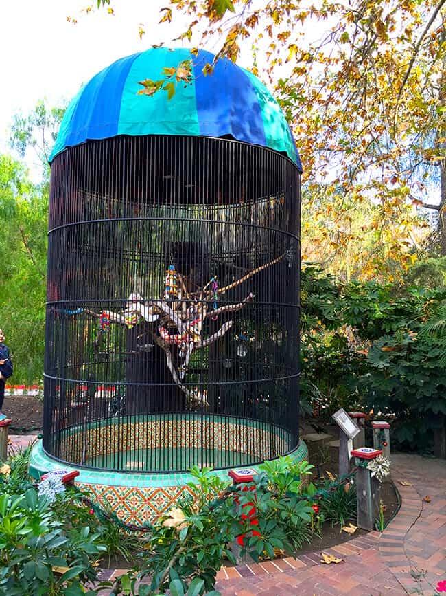 birds-at-rancho-las-lomas