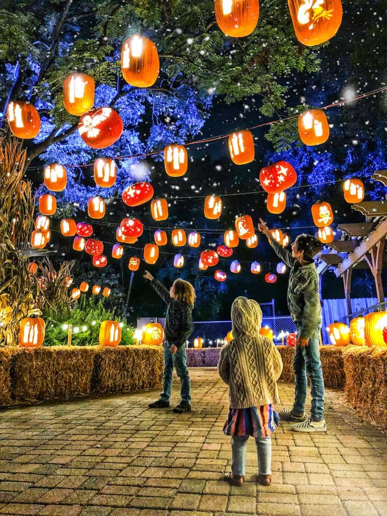Pumpkin Nights Halloween Experience In Southern California