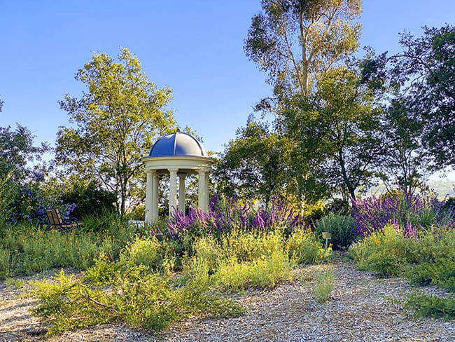 Niguel Botanical Preserve Weddings