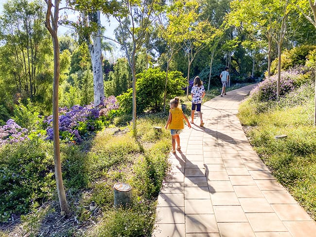 Niguel Botanical Preserve in Laguna Niguel